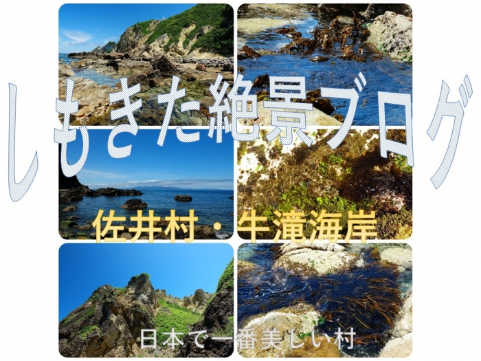 Photo_20200706145601